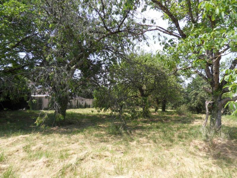 Vente terrain Montigny-sur-loing 137800€ - Photo 2