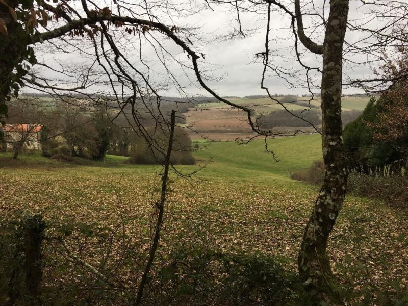 Vente terrain Coursac 30000€ - Photo 1