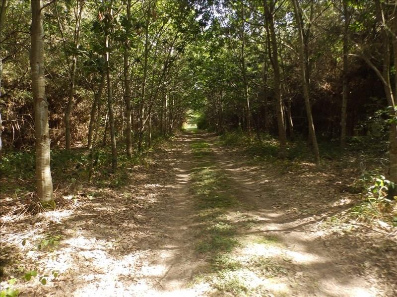 Vente terrain Lucenay les aix 154000€ - Photo 5