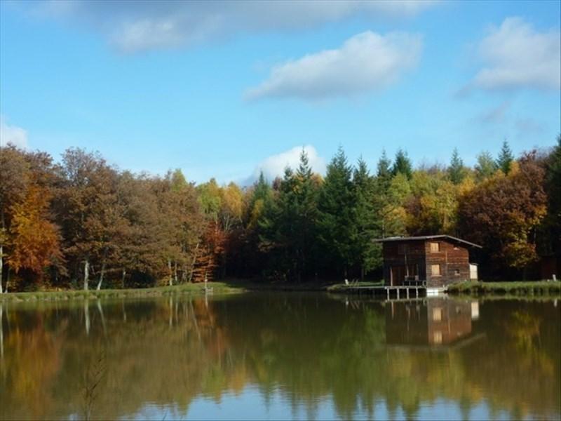Verkoop  stukken grond Arzay 215000€ - Foto 2