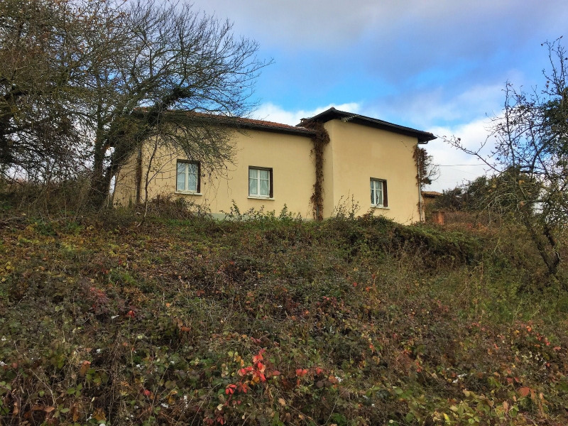 Sale house / villa Bussieres 89000€ - Picture 1