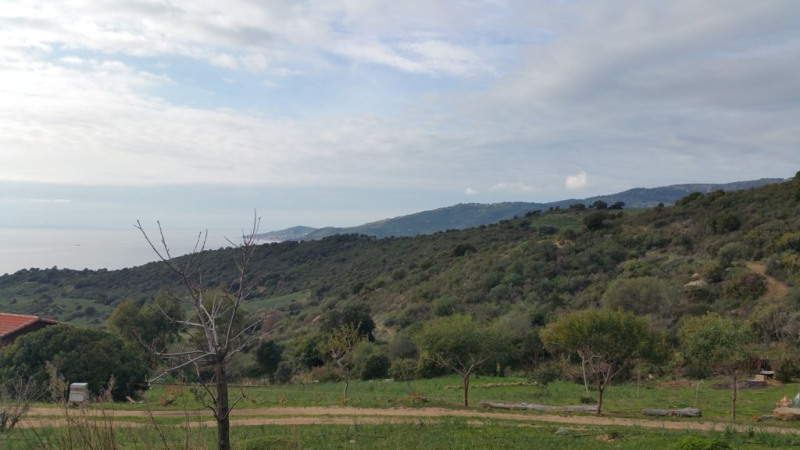 Sale site Sagone 192 000€ - Picture 5