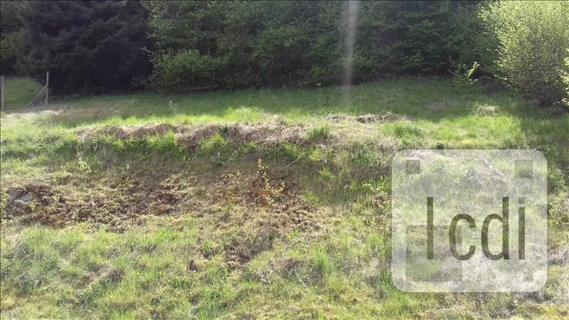 Vente terrain La broque 67840€ - Photo 4