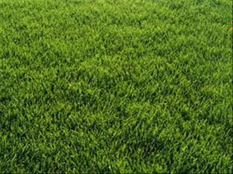 Vente terrain Le foeil 65400€ - Photo 1