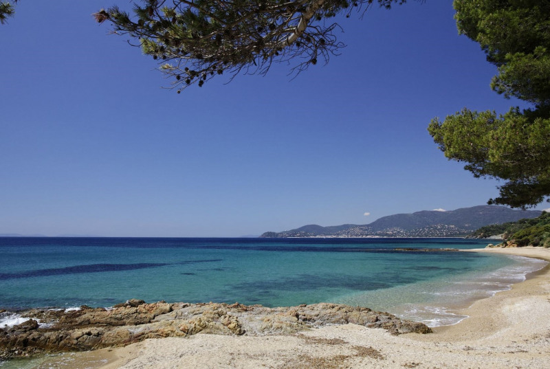 Vacation rental house / villa Cavalaire 1600€ - Picture 16
