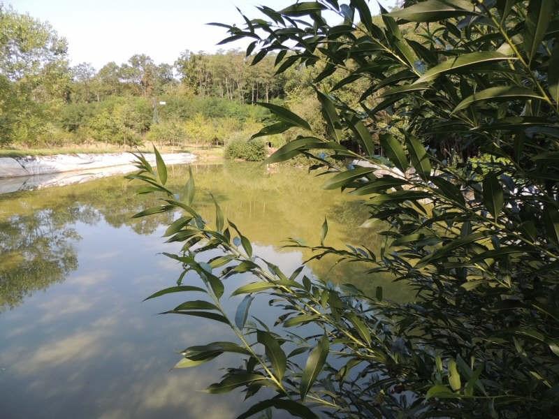 Vente terrain Charbuy 65000€ - Photo 1