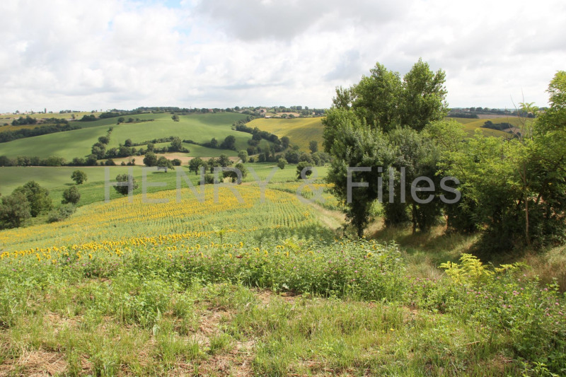 Vente terrain Rieumes 65000€ - Photo 4