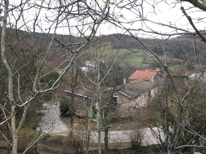 Sale site Saint-victor-sur-loire 95000€ - Picture 3
