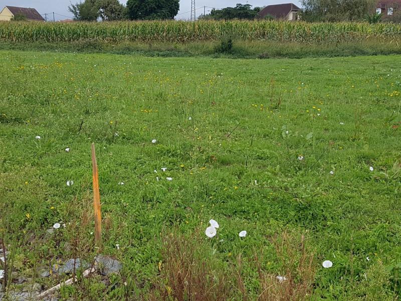 Vente terrain Orthez 56000€ - Photo 1