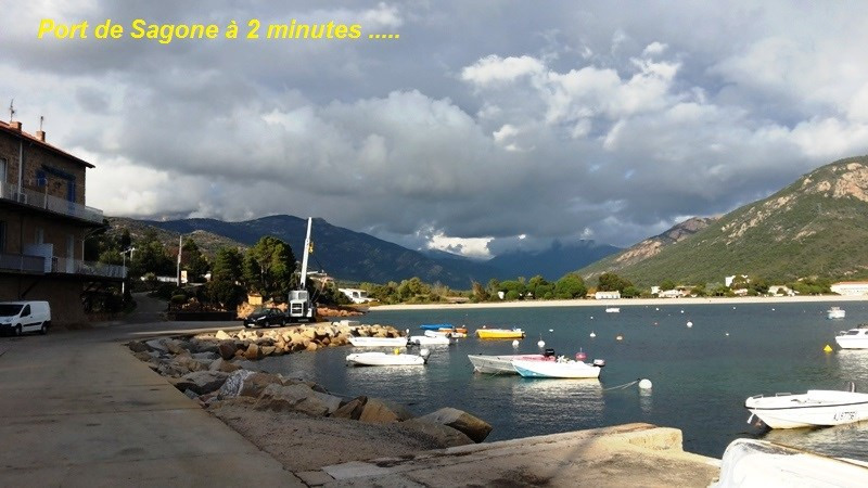 Sale site Sagone 192 000€ - Picture 16