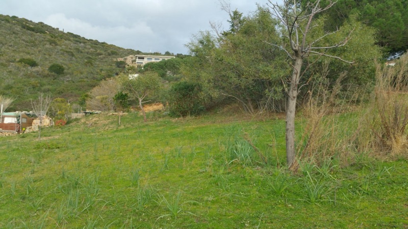 Sale site Sagone 192 000€ - Picture 4