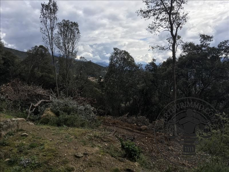 Vente terrain Coggia 69300€ - Photo 3