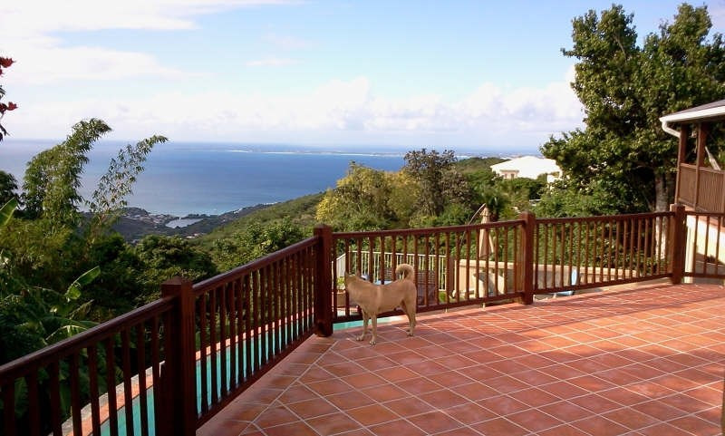 Deluxe sale house / villa St martin 1260000€ - Picture 4