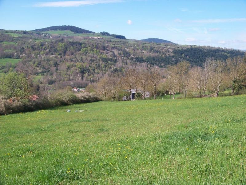 Sale site Le monastier sur gazeille 18700€ - Picture 1