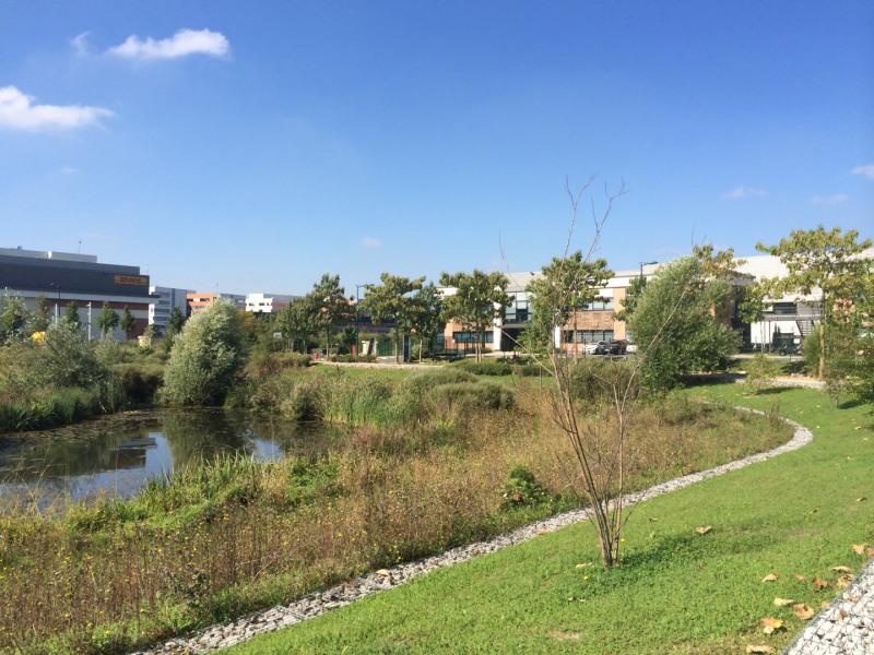 Location Local d'activités / Entrepôt Villeneuve-la-Garenne 0