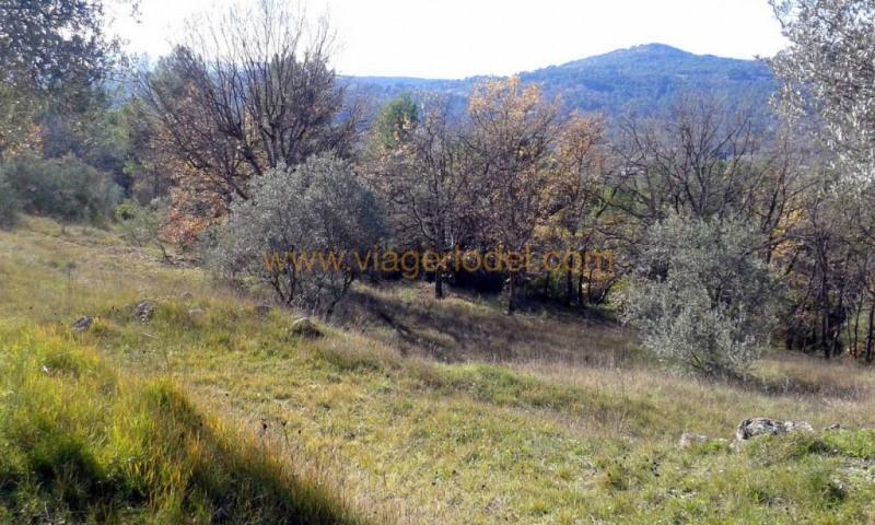 Verkauf grundstück Fayence 224700€ - Fotografie 5