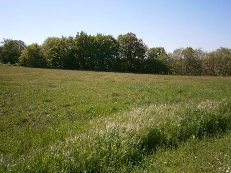 Sale site Plassac 49 000€ - Picture 4