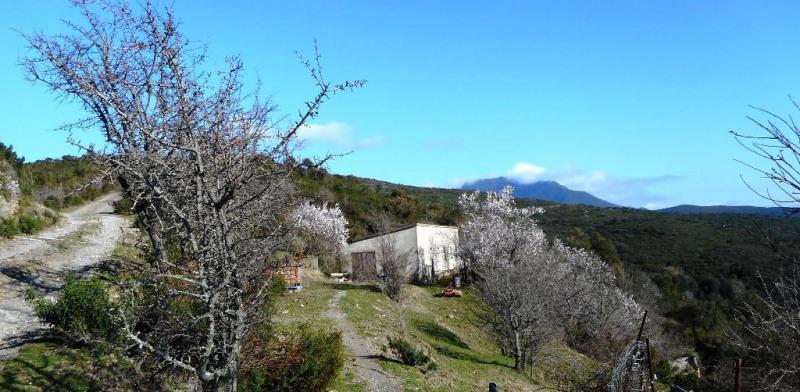 Sale house / villa Corte 465000€ - Picture 16