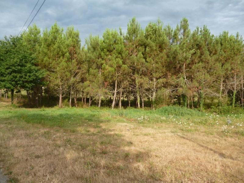 Vente terrain Perigueux 33000€ - Photo 1