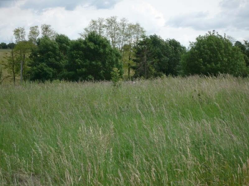 Vente terrain Rochefort 75000€ - Photo 4