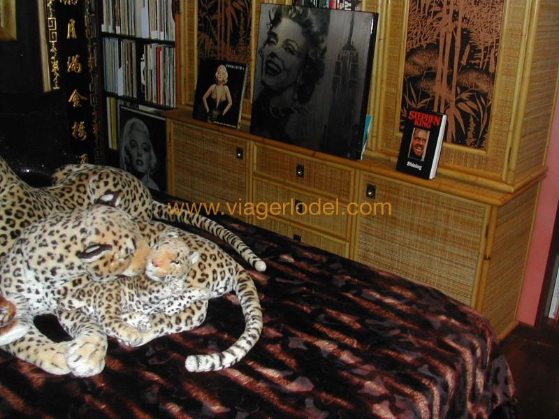 Vitalicio  apartamento Golfe-juan 230000€ - Fotografía 9