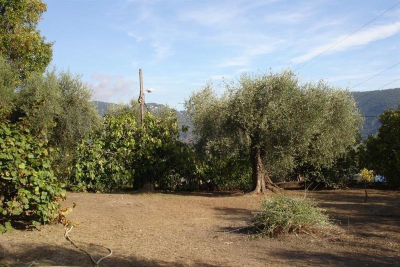 Vendita terreno L'abadie 318000€ - Fotografia 3