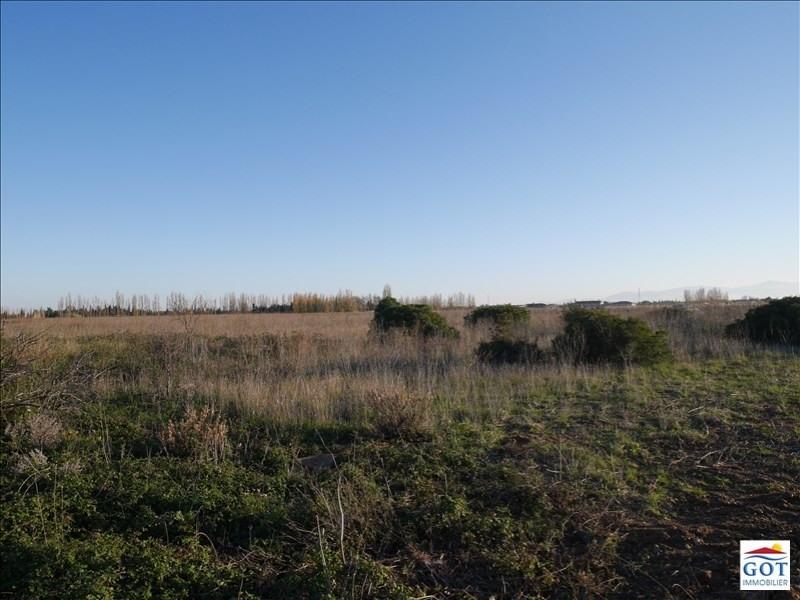 Revenda terreno St hippolyte 13500€ - Fotografia 1