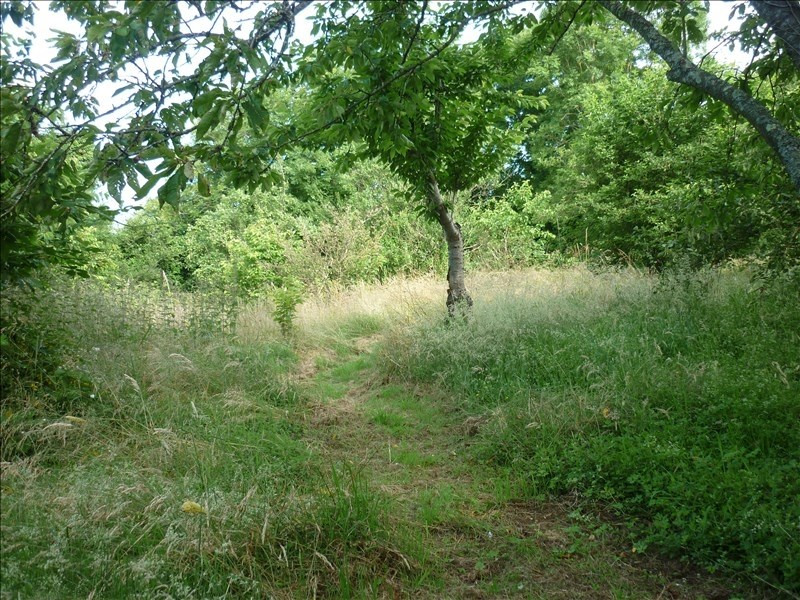 Vente terrain Tourouvre 14500€ - Photo 2