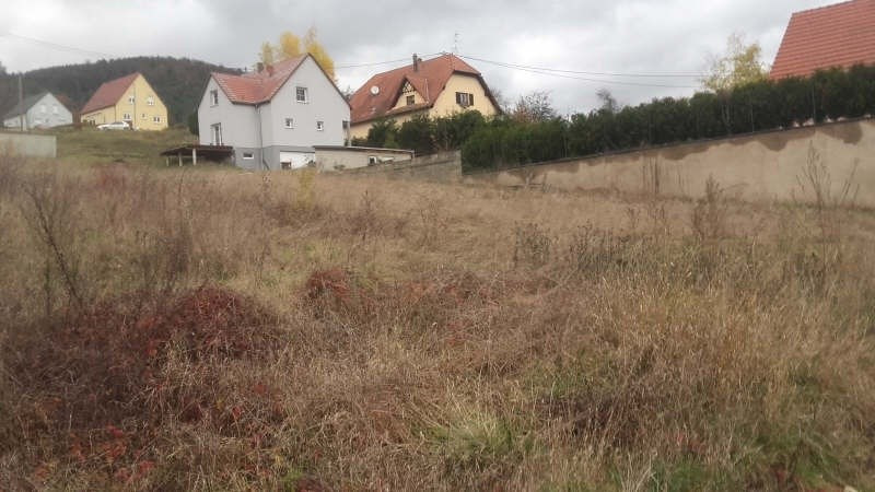 Sale site Reinhardsmunster 75 000€ - Picture 1