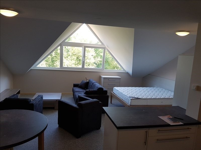 Rental apartment Seltz 690€ CC - Picture 1