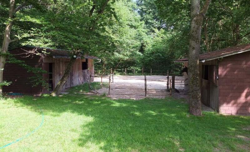 Deluxe sale house / villa Ermenonville 728000€ - Picture 8