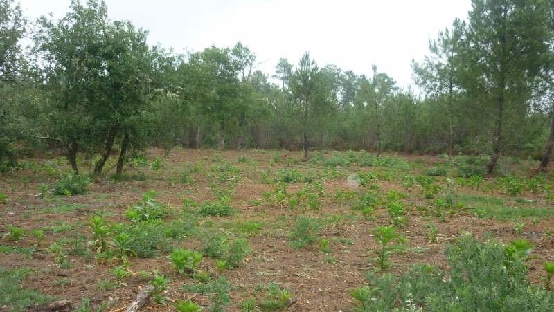 Vente terrain Pissos 86000€ - Photo 1