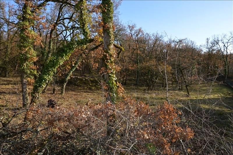 Vente terrain Figeac 33000€ - Photo 1