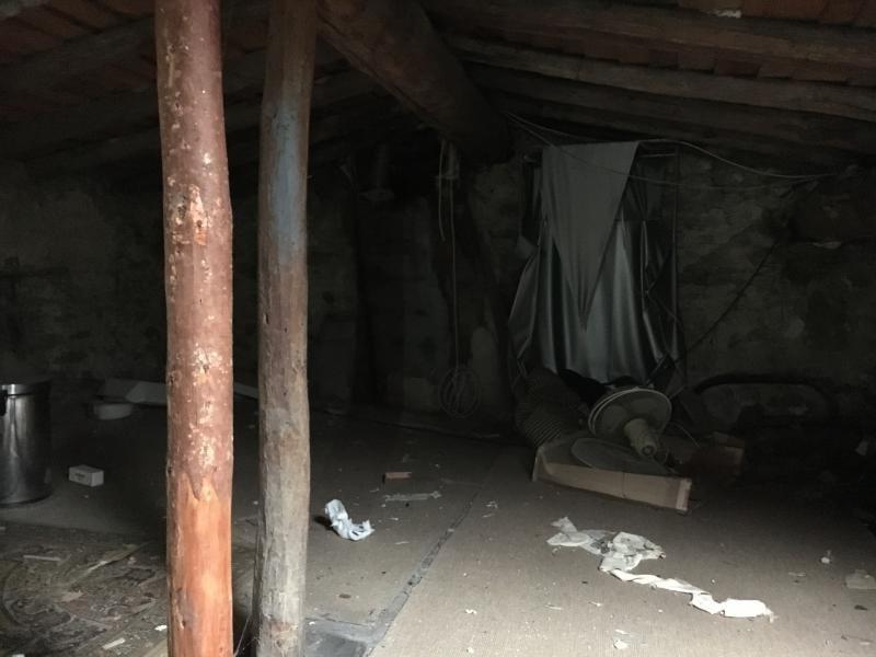 Vente maison / villa Bout du pont de larn 45000€ - Photo 10
