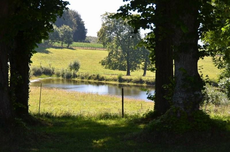 Verkoop van prestige  kasteel Villedieu les poeles 1950000€ - Foto 7