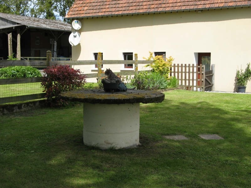Sale house / villa Laulne 344000€ - Picture 2