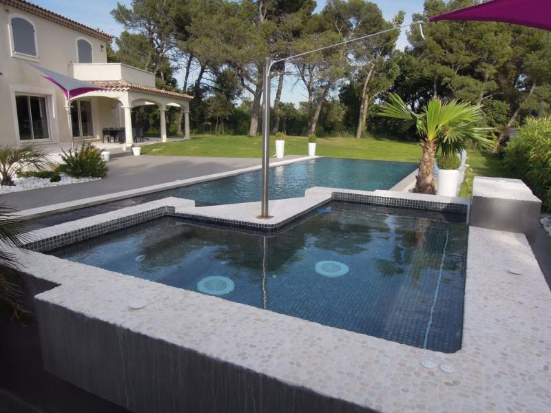 Vente de prestige maison / villa Cabrieres d avignon 935000€ - Photo 13
