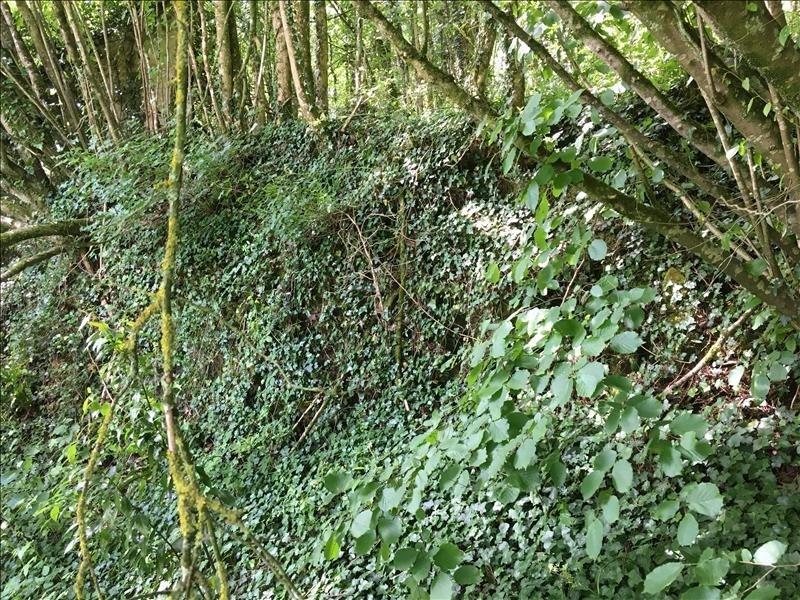 Vente terrain Iteuil 29000€ - Photo 5