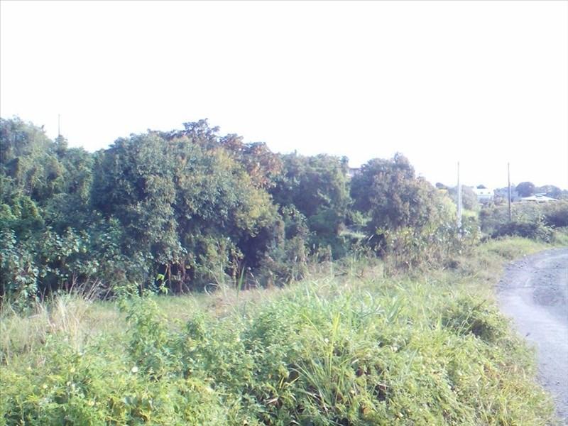 Vente terrain Ravine des cabris 92400€ - Photo 3