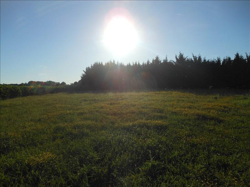 Vente terrain Albi 60000€ - Photo 2