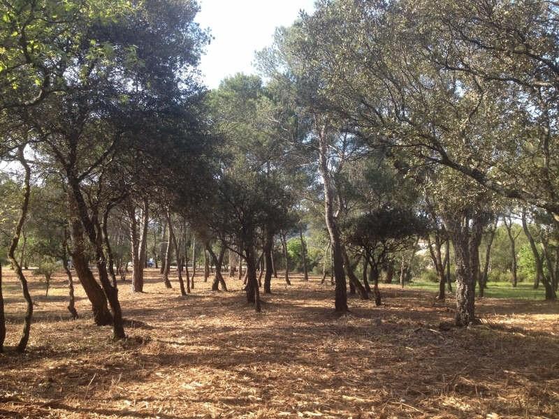 Vente terrain Le cannet des maures 171000€ - Photo 1
