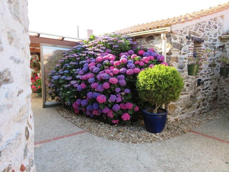 Vente de prestige maison / villa Château-d'olonne 699900€ - Photo 3