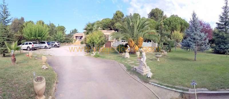 Verkauf auf rentenbasis haus Bouzigues 290000€ - Fotografie 18