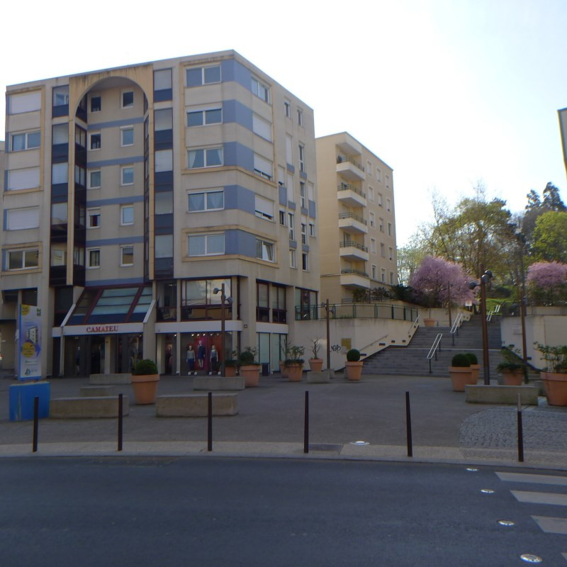 Rental apartment Oullins 507€ CC - Picture 1