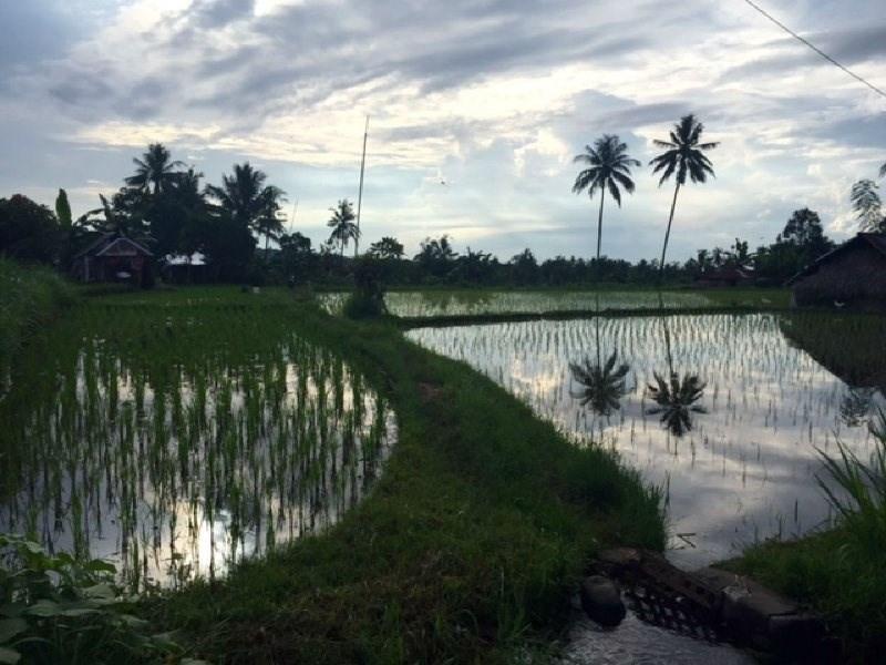 Location vacances maison / villa Bali 850€ - Photo 16