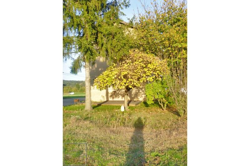 Rental house / villa Reyrieux 795€ CC - Picture 2
