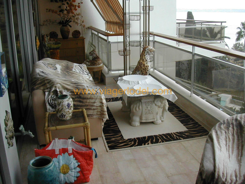 Vendita nell' vitalizio di vita appartamento Golfe-juan 230000€ - Fotografia 20