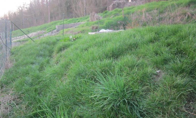 Vente terrain La ferte sous jouarre 45000€ - Photo 2