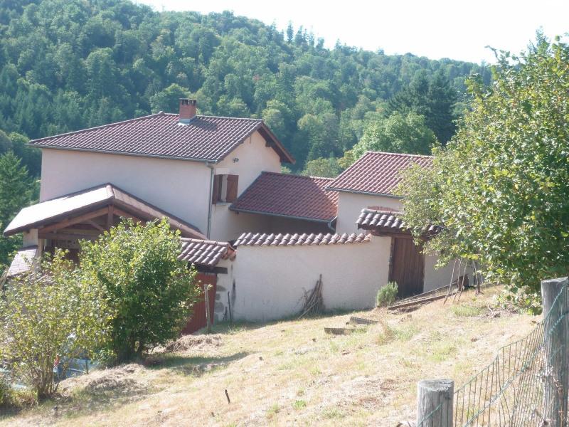 Vente maison / villa Ste foy l argentiere 269000€ - Photo 13