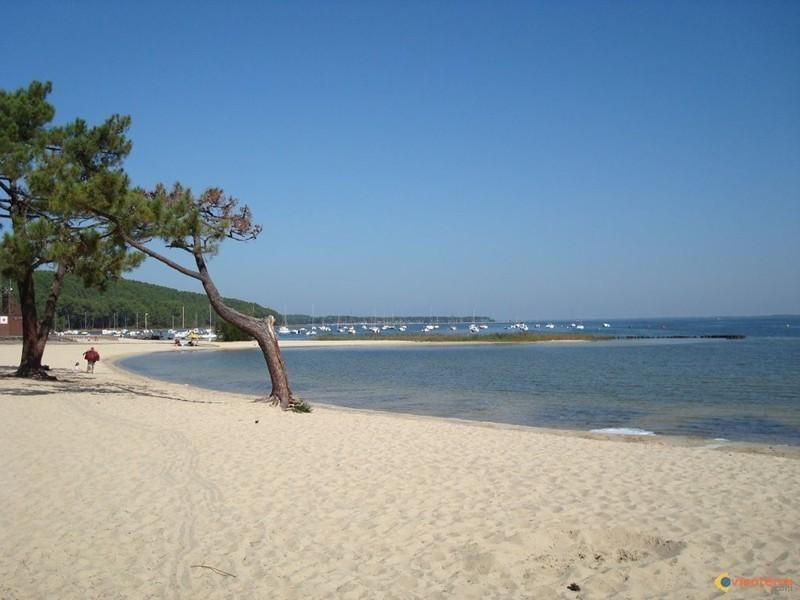 Vacation rental apartment Lacanau-ocean 313€ - Picture 8